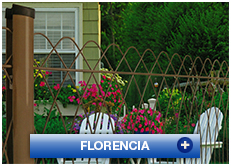 Reja Florencia